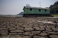 LHQ kêu gọi dành tài chính cho chống biến đổi khí hậu ở châu Phi