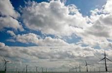"""IEA kêu gọi thế giới đầu tư """"xanh"""" trong lĩnh vực năng lượng"""