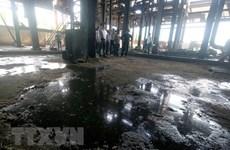 Hậu Giang: Nước sông bị ô nhiễm do nhà máy đường đường xả thải