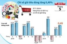 [Infographics] Chỉ số giá tiêu dùng cả nước tháng 5 tăng 0,49%