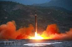 Nguy cơ từ chính sách 'mũ ni che tai' của Mỹ đối với Triều Tiên