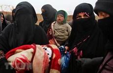 Hơn 1/5 số người sống trong các vùng xung đột bị mắc bệnh tâm thần