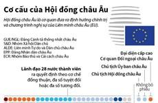 [Infographics] Cơ cấu chính thức của Hội đồng châu Âu