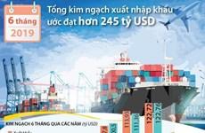 [Infographics] Tổng kim ngạch xuất nhập khẩu 6 tháng đạt 245 tỷ USD
