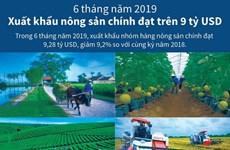 [Infographics] Xuất khẩu nông sản chính đạt trên 9 tỷ USD