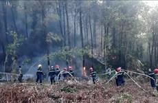 Huy động hơn 500 người tham gia dập tắt cháy rừng tại Quảng Bình