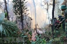 Nhiều khó khăn trong công tác phòng, chống cháy rừng ở Hà Tĩnh