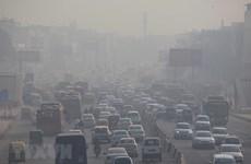 Ô nhiễm không khí nghiêm trọng - bài toán nan giải của Jakarta