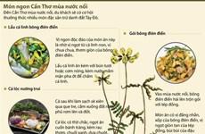 [Infographics] Thưởng thức món ngon Cần Thơ mùa nước nổi