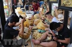 Thừa Thiên-Huế quy hoạch, phát triển ngành nghề nông thôn