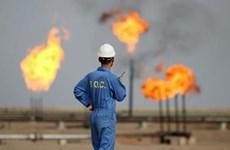 Giá dầu ở thị trường châu Á tăng nhẹ sau khi đi xuống phiên trước
