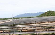 Giải pháp giải tỏa công suất cho các dự án năng lượng tái tạo