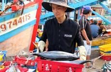 """Khắc phục """"thẻ vàng"""" IUU: Không đăng kiểm tàu cá đánh dấu sai quy định"""