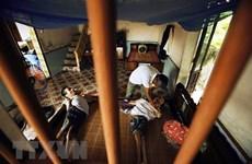 Quảng Nam: Nhiều hoạt động giúp đỡ các nạn nhân chất độc da cam