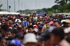 Mỹ bắt giữ hàng trăm người di cư bất hợp pháp tại bang Mississippi