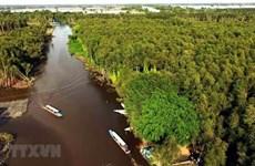 Giới thiệu nét đẹp con người, thiên nhiên ở Đồng bằng sông Cửu Long