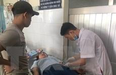 Hàng chục công nhân nhập viện nghi do ngộ độc thuốc xịt côn trùng