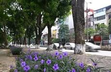 Huy động các sáng kiến xanh cho Hà Nội phát triển bền vững