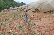 Lâm Đồng: Hàng ngàn tấn rác trượt đổ vùi lấp 7ha đất trồng hoa và rau
