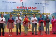 Triển lãm mỹ thuật khu vực Tây Bắc tại Hà Giang: Không có giải A