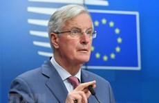 Động thái của EU chuẩn bị cho Brexit không thỏa thuận
