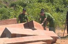 Vụ phá rừng quy mô lớn tại Đắk Lắk: Phát hiện thêm 500m3 gỗ bị hạ