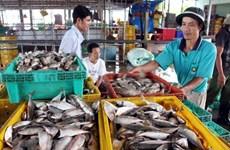 Kiên Giang phát triển các khu công nghiệp và khu đô thị ven biển