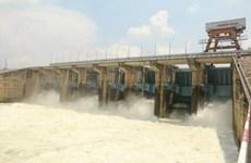 Triều cường sông Đồng Nai lên báo động 2, Thủy điện Trị An giảm xả lũ
