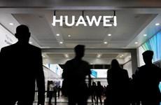 Liệu các biện pháp trừng phạt của Mỹ có thể 'cản đường' Huawei?