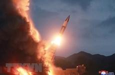Hàn Quốc: Triều Tiên có thể đã phóng tên lửa từ tàu ngầm