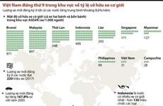 [Infographics] Việt Nam đứng thứ 9 ASEAN về tỷ lệ sở hữu xe cơ giới