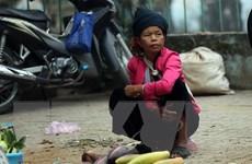 [Photo] Phụ nữ vùng cao mưu sinh giữa lòng chảo Điện Biên