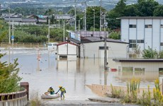 Nhật Bản sẽ trích quỹ 6,5 triệu USD để khắc phục hậu quả bão Hagib