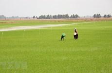 Kiên Giang huy động 17.000 tỷ đồng xây dựng nông thôn mới