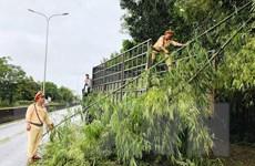 Quảng Nam: Huyện vùng cao Nam Trà My bị cô lập do mưa lũ sau bão