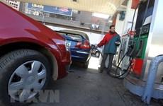 Giá dầu thế giới tăng hơn 2% sau báo cáo dự trữ dầu của Mỹ tăng thấp