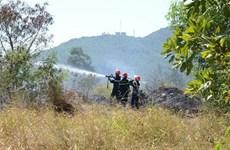 Diễn tập chữa cháy rừng cấp quốc gia năm 2019 tại Hòa Bình