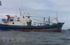 Tổng cục Thủy sản: Bảo hiểm tàu cá vẫn thực hiện theo Nghị định 67