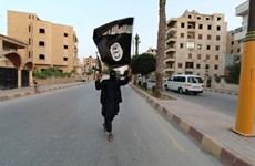 Chính quyền Thổ Nhĩ Kỳ trục xuất 5 tay súng IS mang quốc tịch Đức