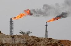 Thị trường dầu mỏ trước thời điểm quan trọng: 'Vàng đen' sẽ tăng giá?
