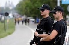 Ba Lan bắt giữ một người Ukraine nghi âm mưu tấn công khủng bố