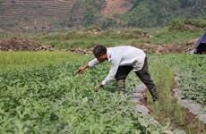 Đẩy mạnh hợp tác giữa Việt Nam và các tổ chức phi chính phủ nước ngoài