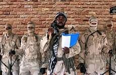 Không quân Nigeria tiêu diệt ít nhất 30 phần tử Boko Haram