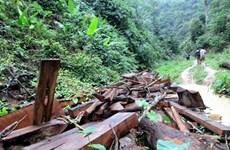 Đắk Lắk: Cán bộ kiểm lâm Vườn Quốc gia Yók Đôn bị hành hung