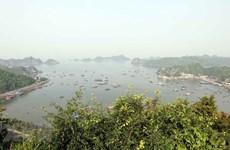 Phát triển khu dự trữ sinh quyển thế giới Cát Bà theo hướng bền vững