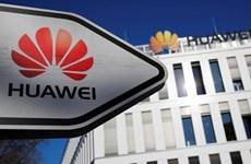 Anh tổn thất lớn nếu cấm Huawei tham gia mạng 5G?
