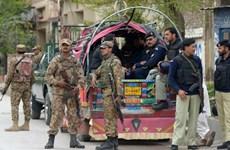 Pakistan: Ít nhất 7 người thiệt mạng do đạn cối bắn từ Afghanistan