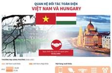 [Infographics] Quan hệ đối tác toàn diện Việt Nam và Hungary