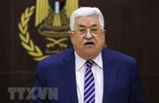 """Palestine và lựa chọn không thể """"quay ngược thời gian"""""""