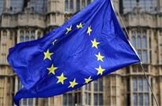 Châu Âu trong một thế giới chính trị quyền lực